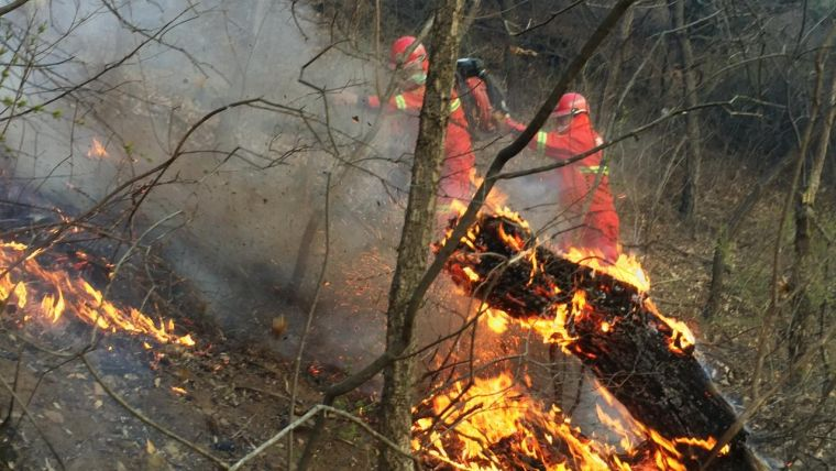 causas de los incendios forestales complicado