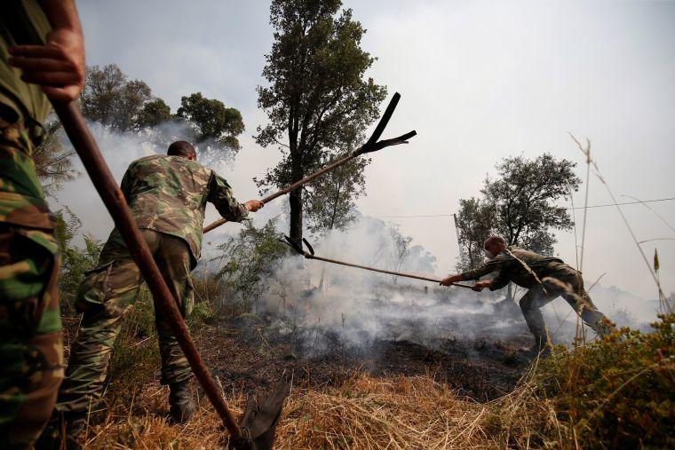 causas de los incendios forestales ejercito