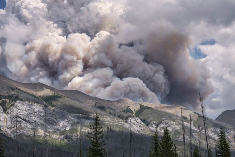 causas de los incendios forestales fuego17