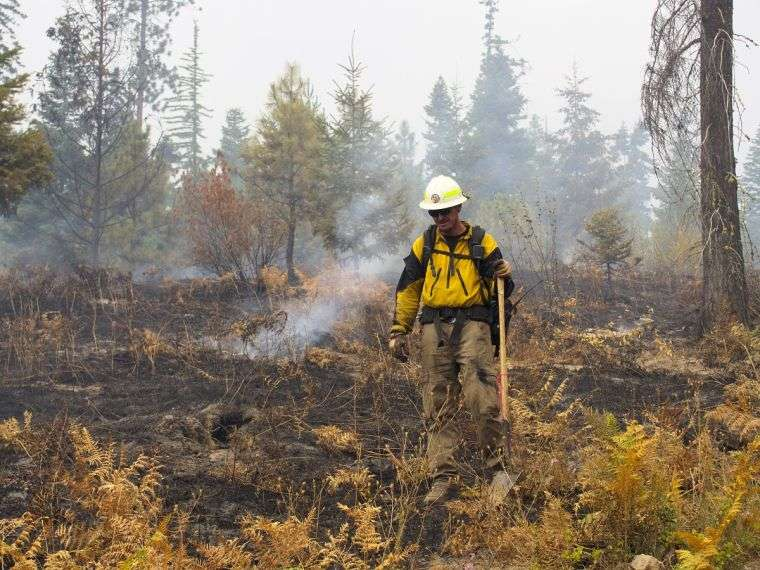 causas de los incendios forestales fuego7