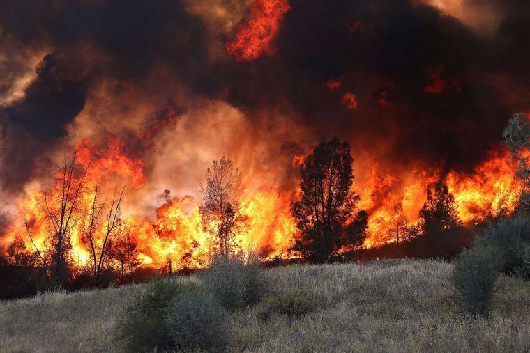 causas de los incendios forestales fuerte