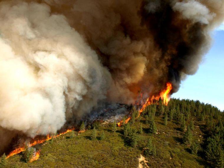 causas de los- ncendios forestales lejos