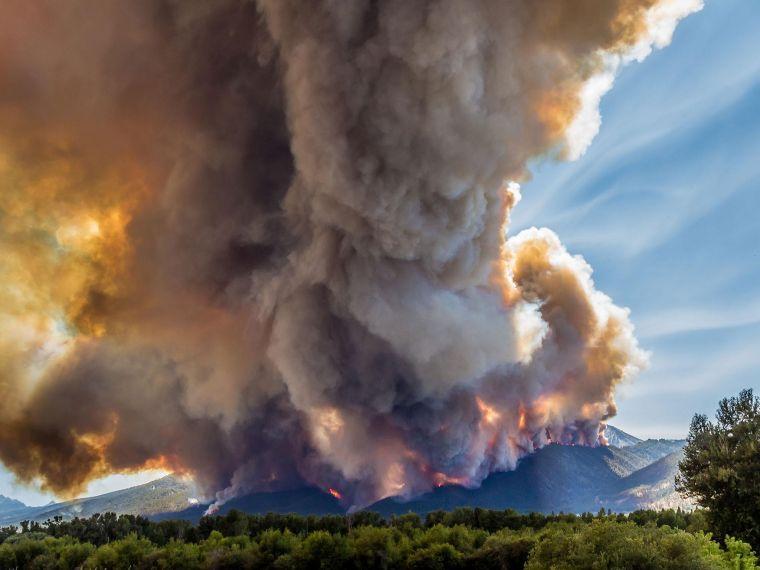 causas de los incendios forestales magnitud