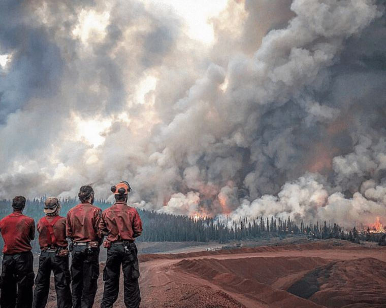 causas de los incendios forestales observar