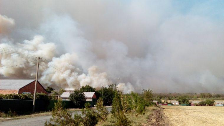 causas de los incendios forestales seco