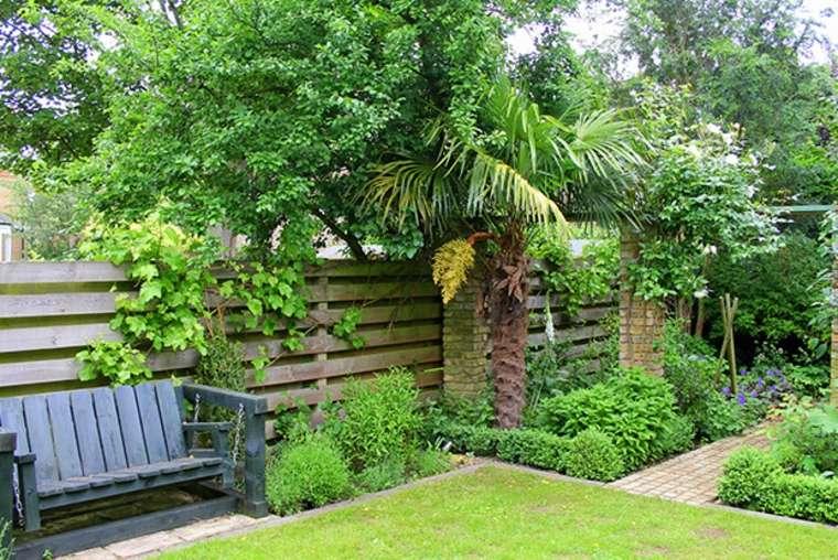 jardín con Plantas enredaderas