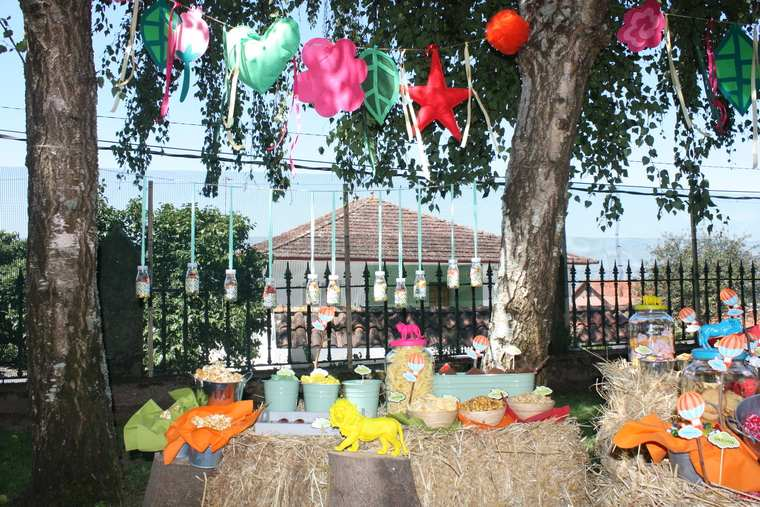 decoracion de cumpleaños rural