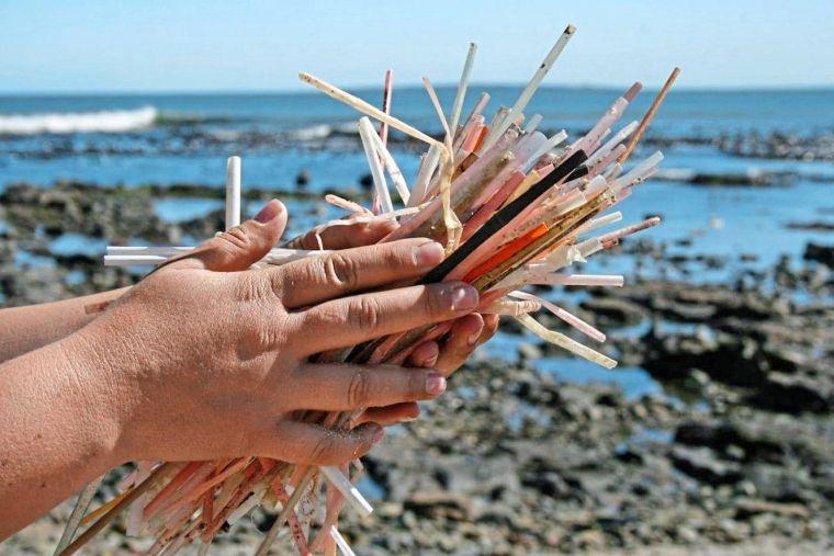 el plastico pajitas mar