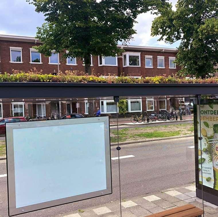 Holanda cubre cientos de paradas de autobús con vegetación
