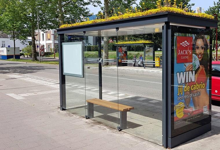 Holanda cubre cientos de paradas de autobús con vegetación como un regalo para las abejas