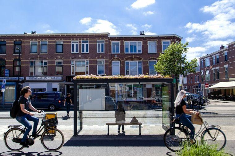 """""""Un techo verde es bueno para una ciudad sana y habitable"""""""