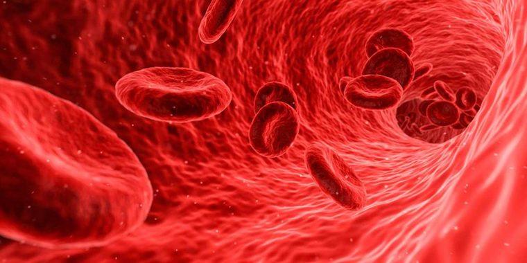 keto sangre acida