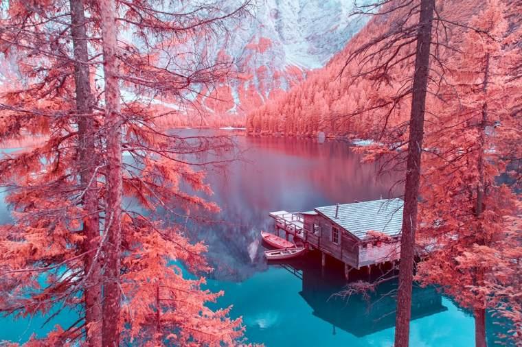 bonito paisaje en infrarrojos