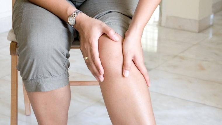 mosquito comun dolor