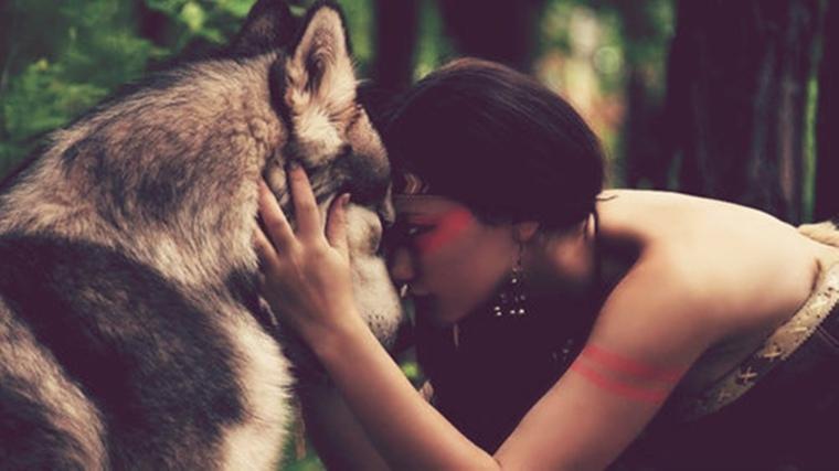 Significado del Lobo como Espíritu Animal