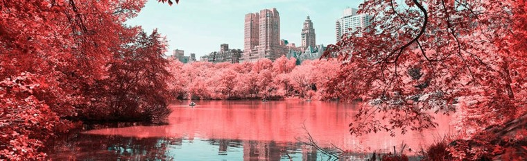 Fotografía de Central Park con infrarrojos