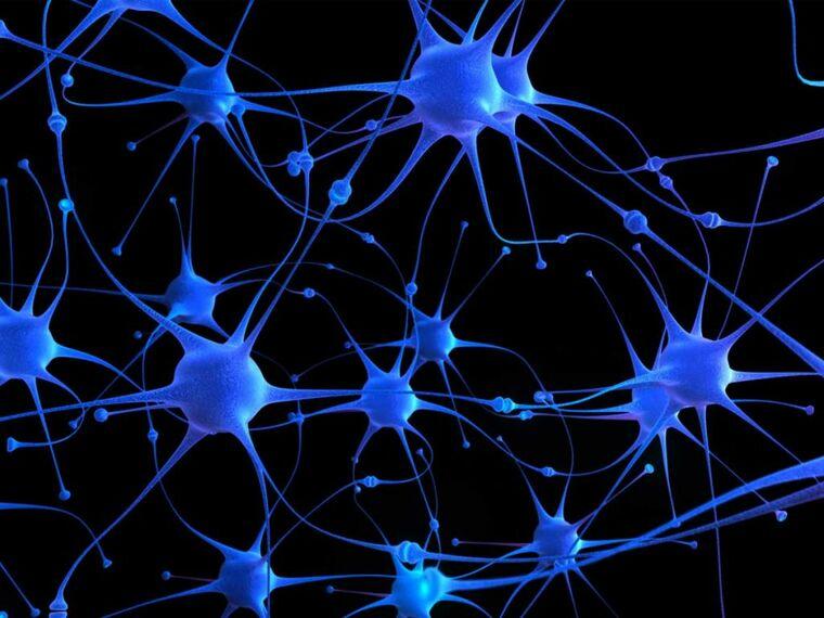salud y vida dopamina (1)