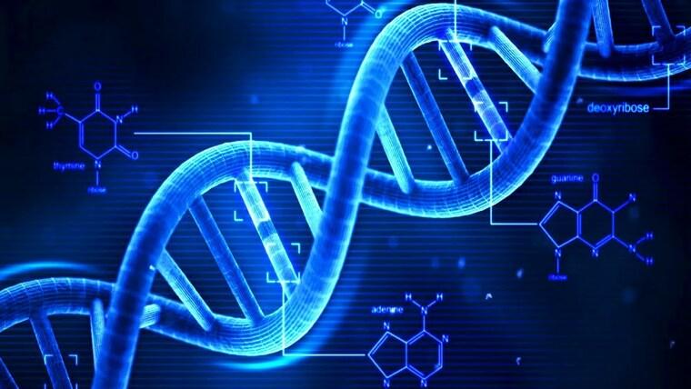 salud y vida genetica