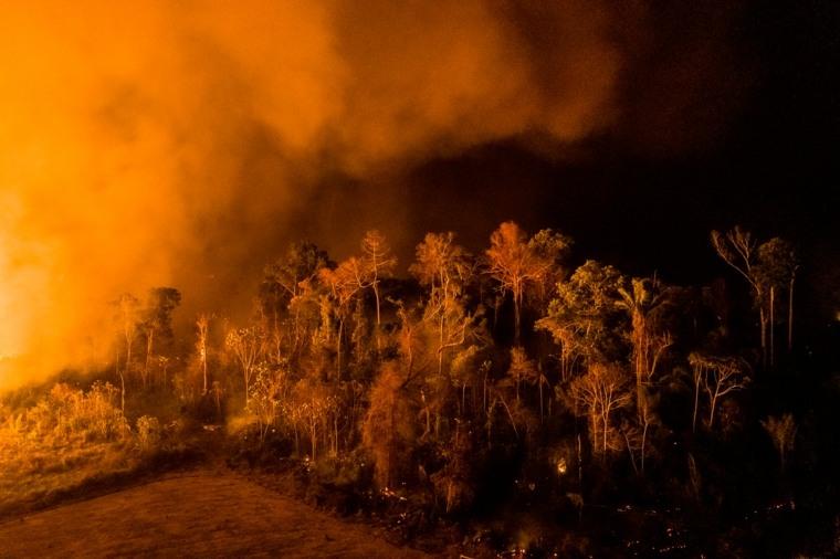 bosque ardiendo