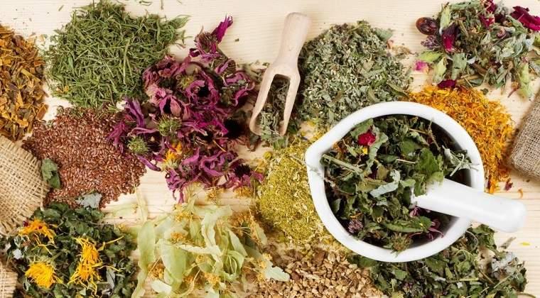 como-desintoxicar-el-organismo-hierbas