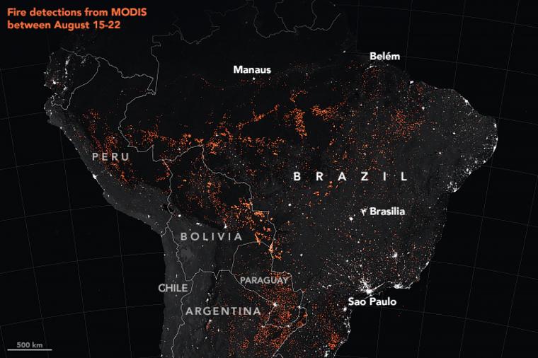 Solo en el último medio siglo, casi el 20 por ciento de la selva amazónica ha desaparecido