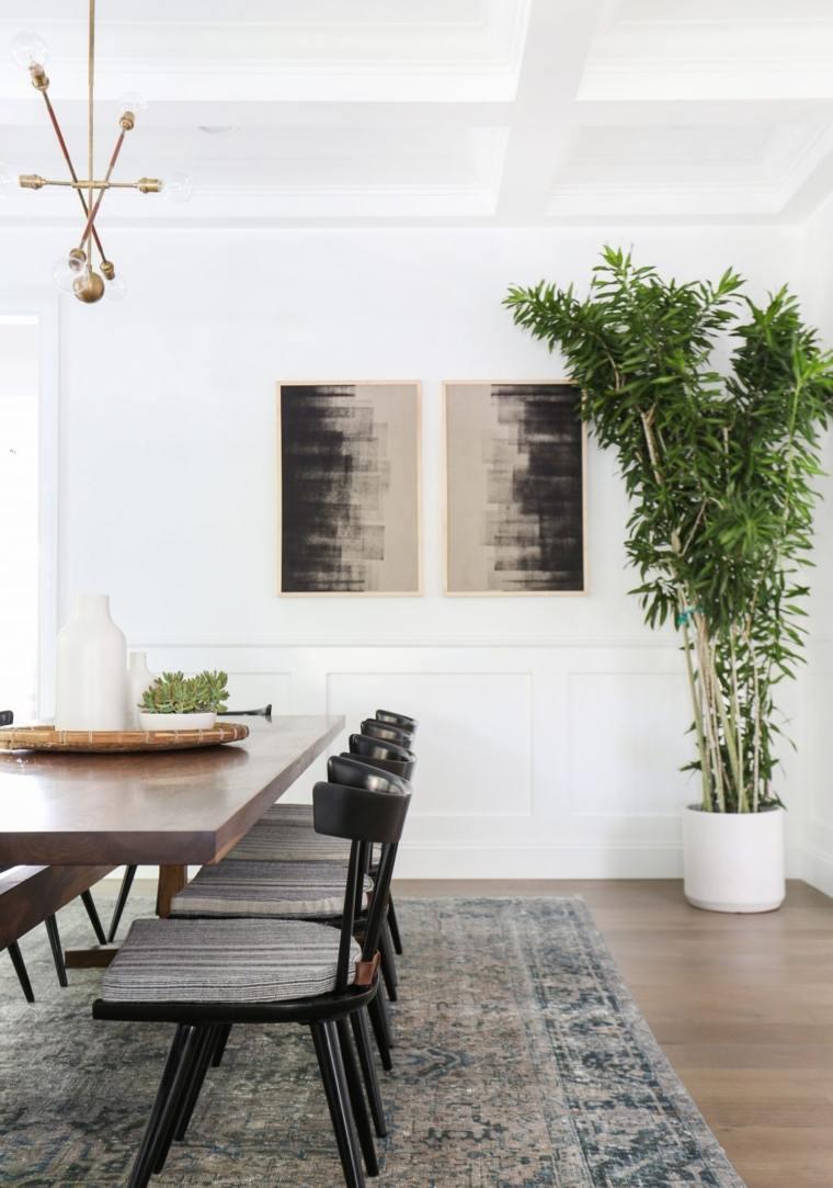 plantas-cuadros-pared-blanca