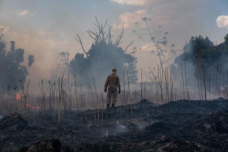 Incendios en Amazonas y sus horribles consecuencias