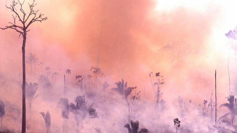 Incendio en Amazonas y sus horribles consecuencias