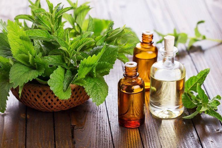 aceites esenciales-guia-menta