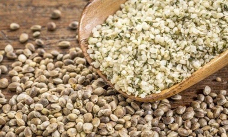 alimentos vegetales ricos en proteínas canamo