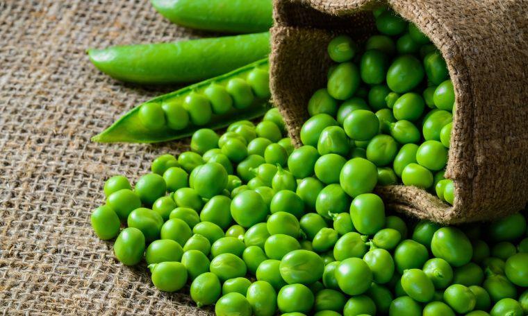 alimentos vegetales ricos en proteínas chicharo