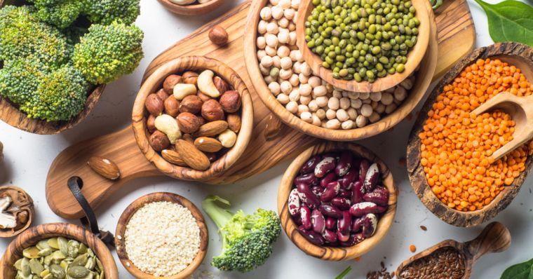 alimentos vegetales ricos en proteinas inicio