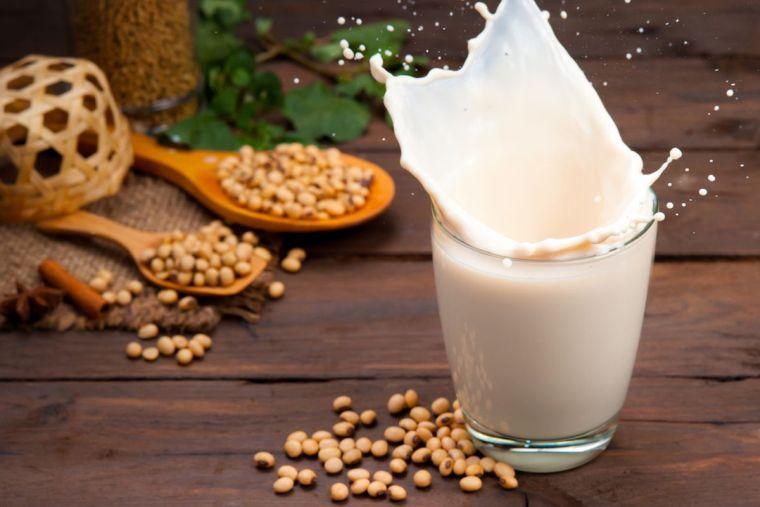 alimentos vegetales ricos en proteínas leche