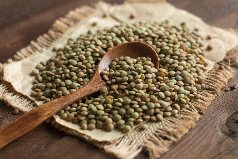 alimentos vegetales ricos en proteínas lenteja