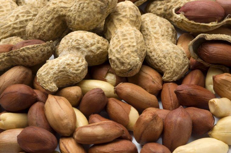 alimentos vegetales ricos en proteínas mani