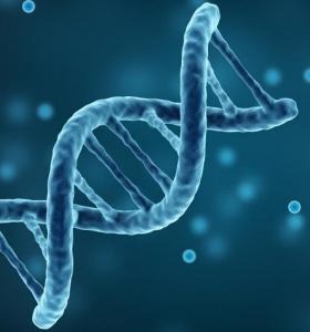 genes-dna-papel-salud-enfermedades