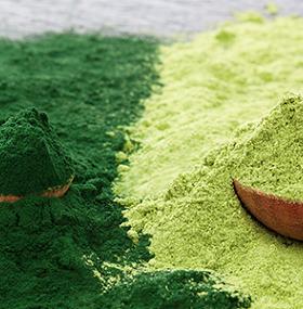 suplementos-polvo-verde-salud