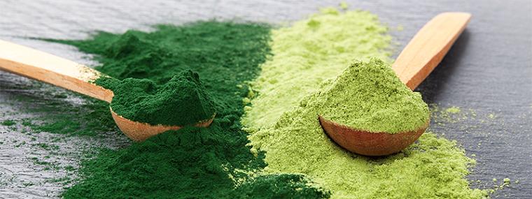 Lo que necesita saber sobre los suplementos de polvo verde
