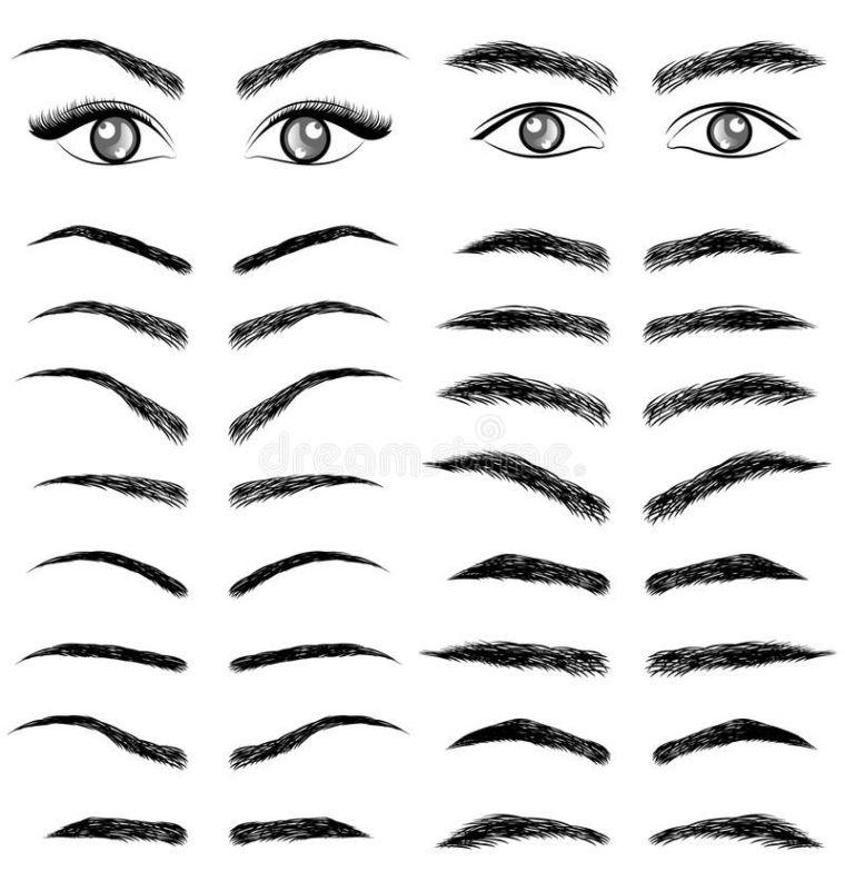 tipos de cejas diferencia