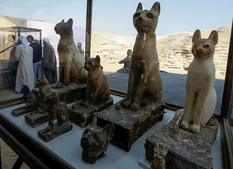 momisas-gatos-estatuas-consejos