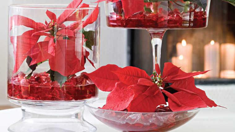 flor de pascua mesa