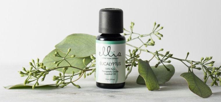 aceites esenciales eucalipto