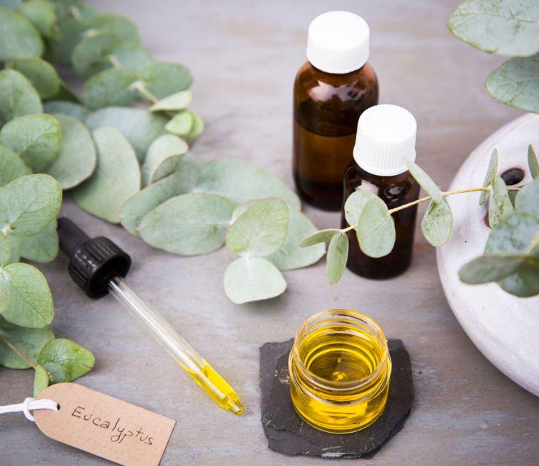 aceites esenciales eucaliptos