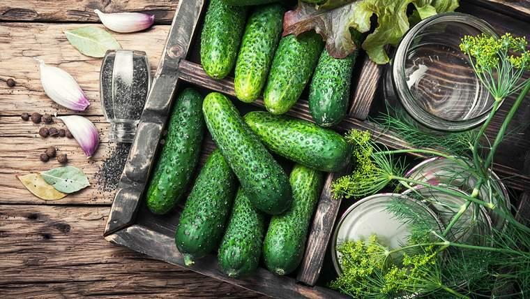 beneficios del pepino alimento