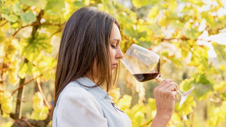 beneficios del vino tinto saludable