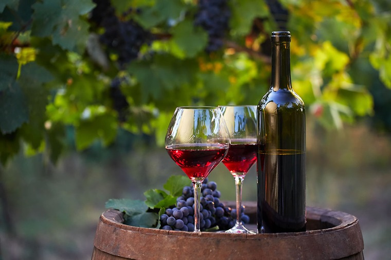 beneficios del vino tinto viñedos