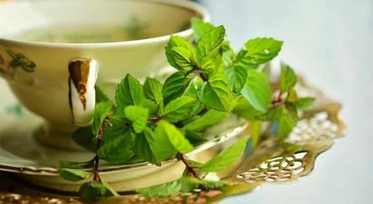 infusiones y tés desintoxicantes de hierbas