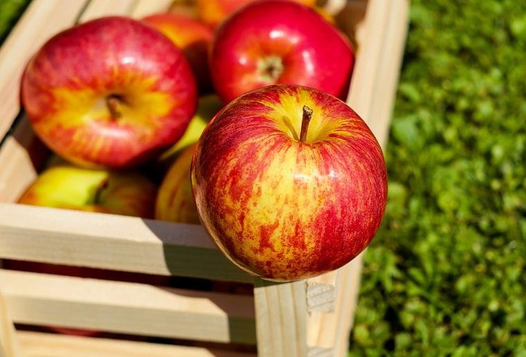 comidas-alto-contenido-boro-menopausia