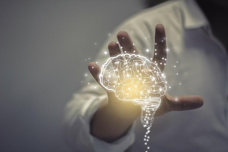 entrena tu cerebro proteccion