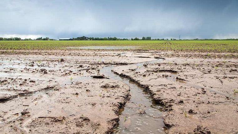 Erosión del suelo-vida-mundo
